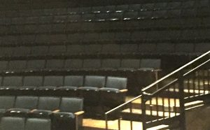 Bowmer Theater Seating.